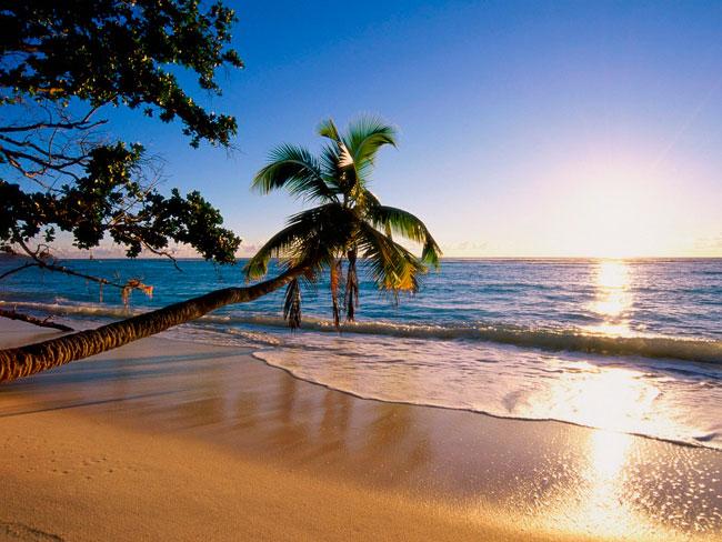 Пляжный отдых